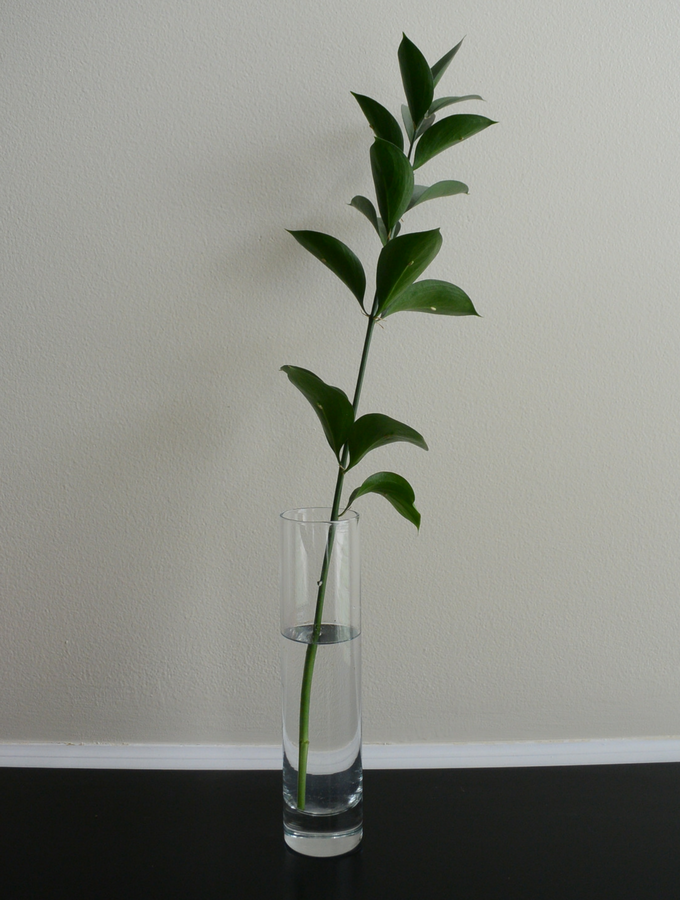 Simple Bud Vase Petals Pies And Otherwise
